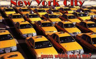 von Cermit aus New York